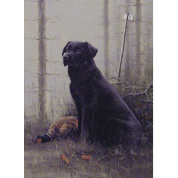 Black Labrador - Oil on Board