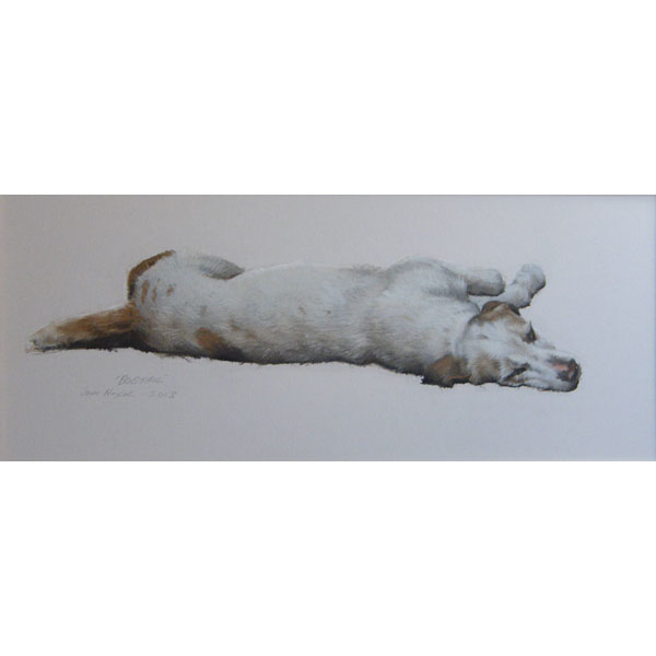 North Cotswold Foxhound - Pastel