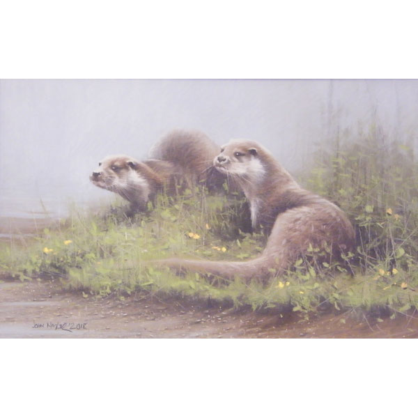 European Otters - Pastel