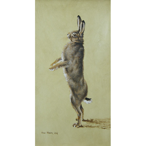 Standing Hare - Oil on Board
